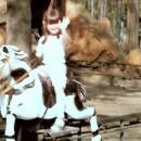 Pferde-Reitbahn